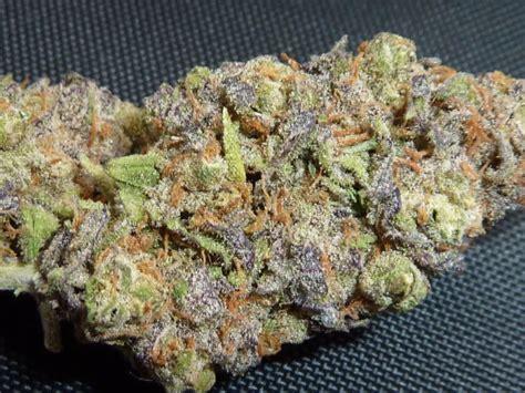 Strawberry Blue strawberry blue marijuana strain reviews allbud