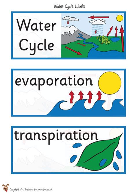 Word Stickers For Walls Uk teacher s pet the water cycle labels free classroom