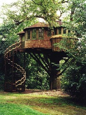 real treehouse a real tree house funky spaces pinterest