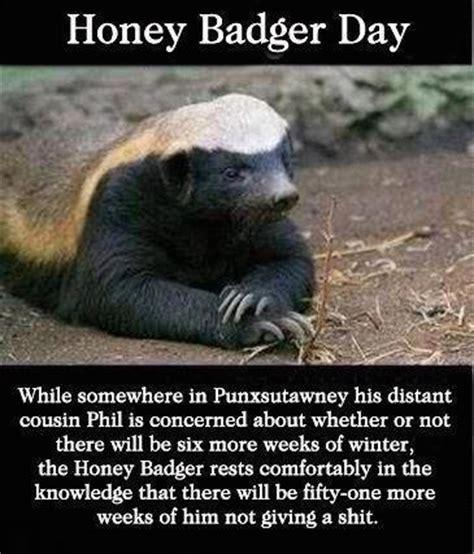 honey badger quotes pinterest