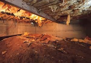 dirt floor basement solutions convert your crawl space into a storage area yahoo homes