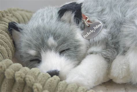 petzzz puppy alaskan husky like stuffed animal breathing petzzz