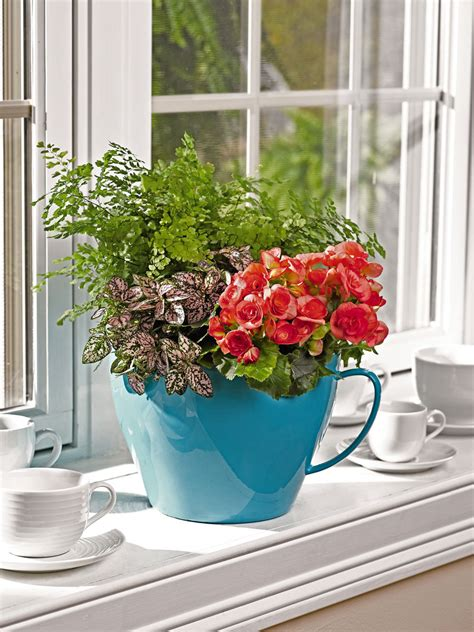 Oversized Teacup Planter by Teacup Planter Viva Self Watering Teacup