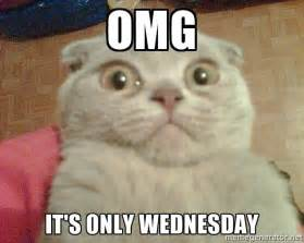 Meme Wednesday - omg it s only wednesday geezus cat meme generator