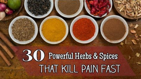 Scientific Spice Rack 30 Powerful Herbs Amp Spices That Kill Pain Fast