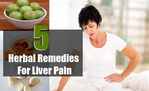 home remedies for liver 5 best herbal remedies to treat liver search home