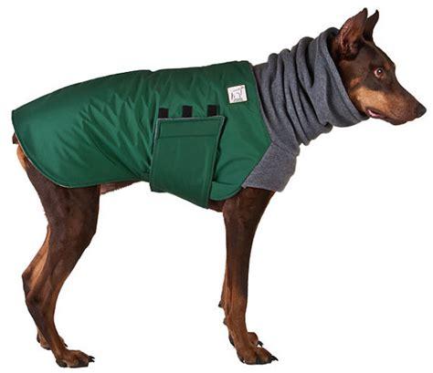 puppy coats doberman pinscher winter coat