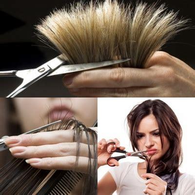 potong rambut potong jpg 15 cara menghilangkan rambut bercabang dan kering secara