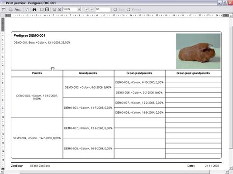 pedigree certificate template free zooeasy cavy software cavy breeders guinea