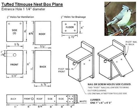 bird house plans for robins google image result for http www coveside biz plans tufted titmouse jpg bird
