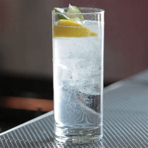 gin and tonic cocktail recipe