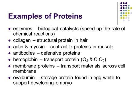exle of protein carbon based compounds ppt