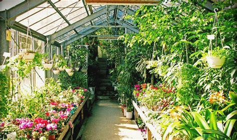greenhouse gardening    part  gardeningdommy
