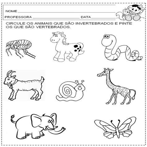 imagenes de animales inbertebrados vertebrados e invertebrados para colorear imagui