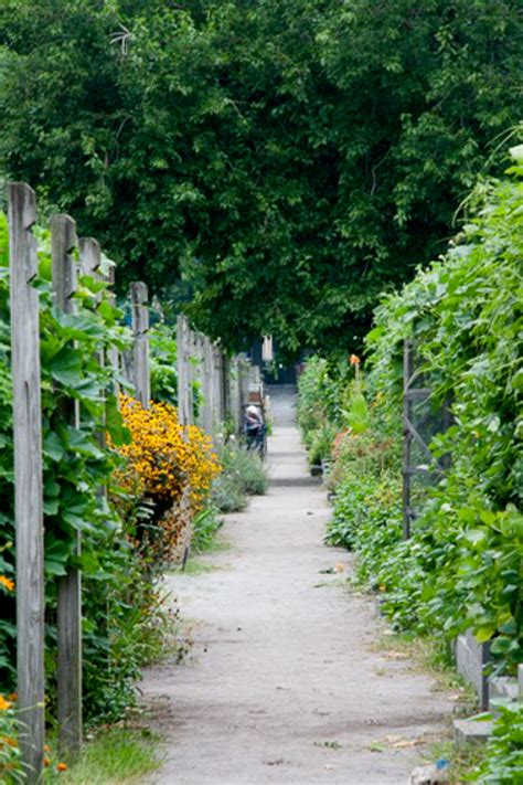 Berkeley Gardens by Community Garden Nation Eight Harvesters Talk