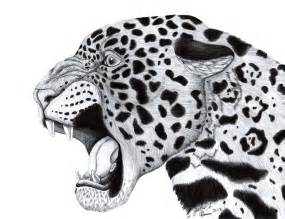 Drawings Of Jaguars Jaguar By Hdevers On Deviantart