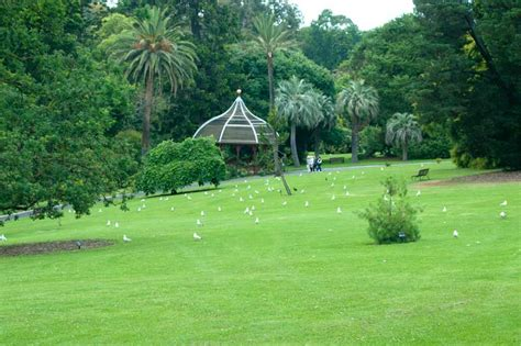 Melbourne Botanical Gardens Parking Royal Botanic Gardens Melbourne Parking Fee Garden Ftempo