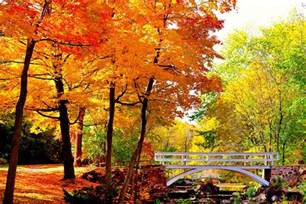 in fall 9 montreal fall foliage destinations you have to see