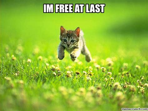 Free At Last Meme - im free at last