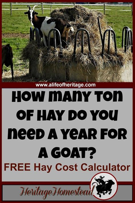 how much does dexter s boat cost 425 best homestead goats images on pinterest goat care