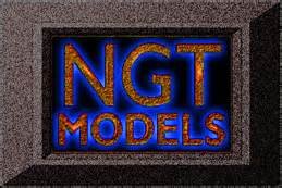Medell Ngt H R by Ngt Models Company Profile Zoominfo