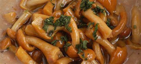 cucinare funghi chiodini ricetta crema di fagioli con funghi chiodini