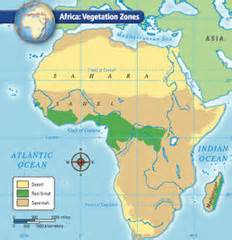 africa map vegetation zones vocabulary west africa flashcards quizlet