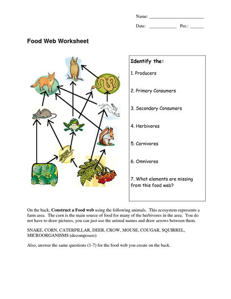 web diagram wetland food web worksheet answers foodfash co