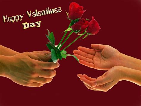 Valentines Day Roses by Valentines Day Pictures