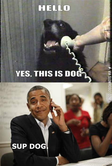 Obama Dog Meme - sup dog