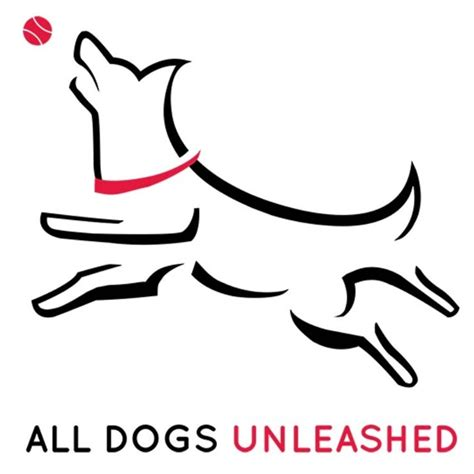 all dogs unleashed all dogs unleashed in carrollton tx 75006 citysearch