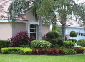 contemporary shaded front yard landscaping ideas with palm