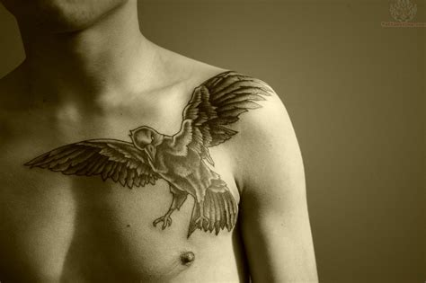 raven chest tattoo on chest tattoos