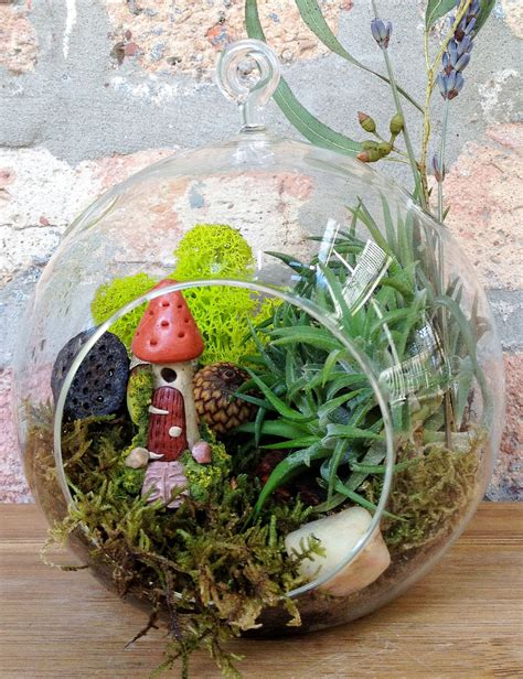 10 beautiful plant terrariums home designing
