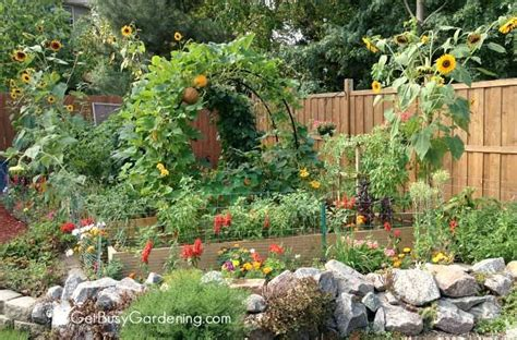 backyard garden layout backyard vegetable garden design how to plan a vegetable