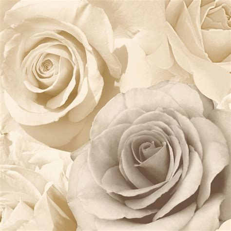 Zebra Print Wall Murals muriva madison rose floral photographic flower wallpaper