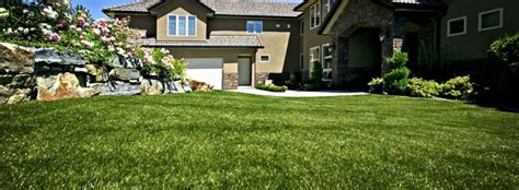 tappeti sintetici per casa erba sintetica o prato sintetico le basi da conoscere