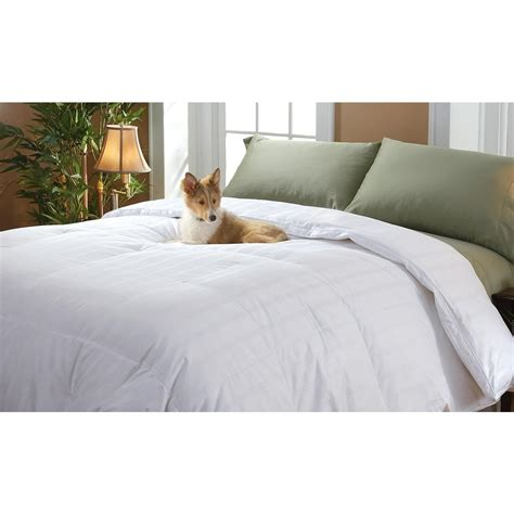 heavyweight down comforter heavyweight down comforter 173957 comforters at