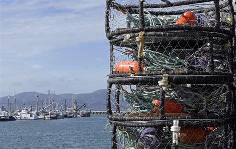 cost of fishing boat crab high toxin level delays california recreational crab
