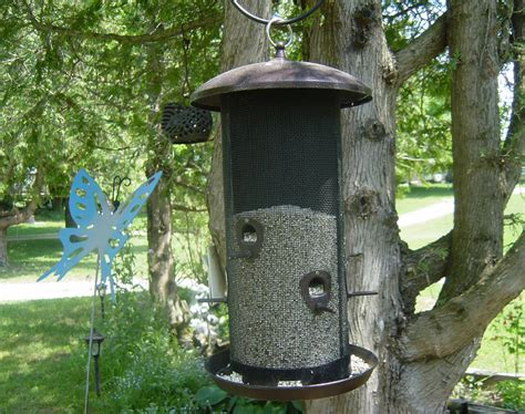 innovative bird feeders for large bird 122 bird feeders
