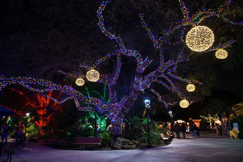 zoo lights houston tx houston zoo zoo lights