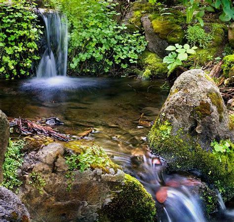 Best Botanical Gardens In California Best Botanic Gardens Top 50 Botanic Gardens In America