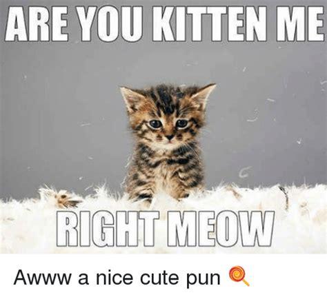 pun meme 25 best memes about puns puns memes