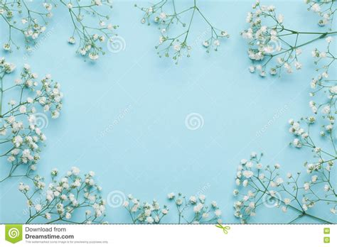 flat background pattern free wedding flower frame on blue background from above