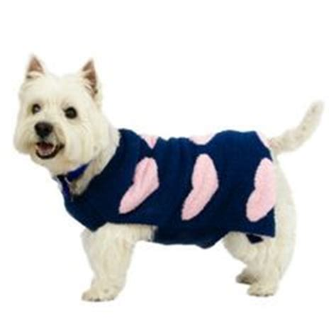 petsmart sweaters a pet on s day on plush dogs and pets