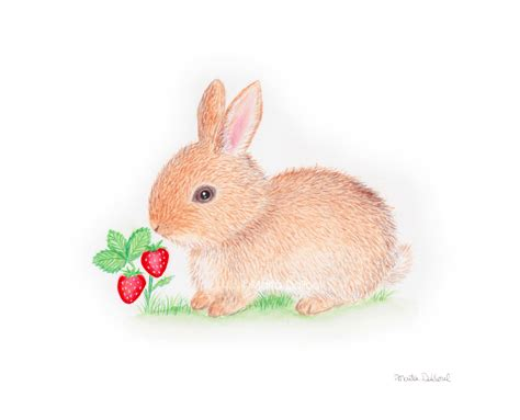 Bunny Art Print Nursery Animal Art Decor Kids Room Art Baby Rabbit Decorations Nursery