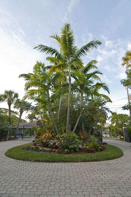 landscaping sarasota florida  tropical palm trees