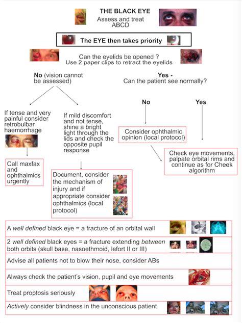 guidelines eye injuries international society  head  neck trauma