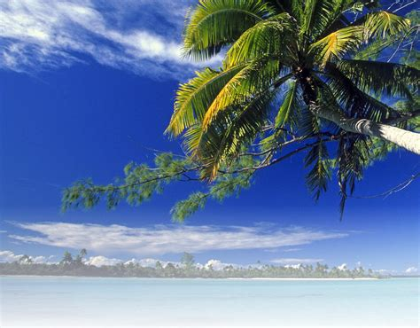 tropical vacation destinations tropical vacation destinations images frompo