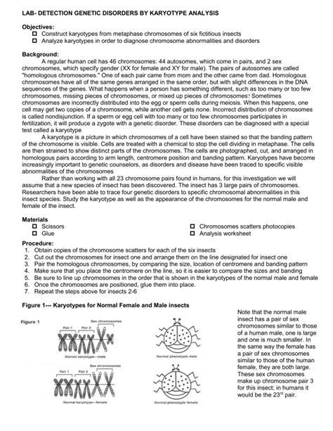Karyotype Worksheet Answers by Genetic Disorders Worksheet Geersc